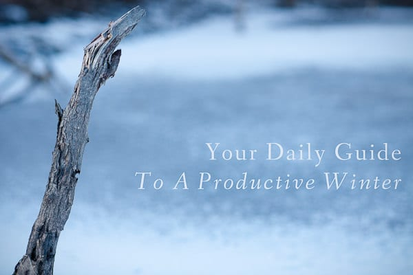winter productivity