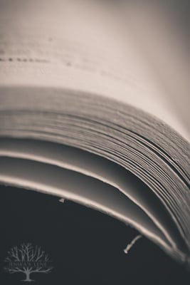 20130706_PAGES_3658-2