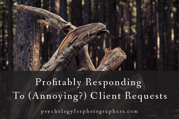 Profitably Responding To (Annoying?) Client Requests