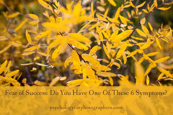 Fear of Success Do You Have One Of These 6 Symptoms