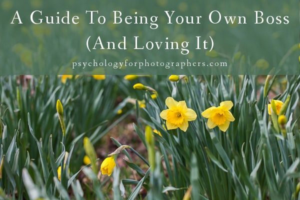 A guide to being your own boss and loving it