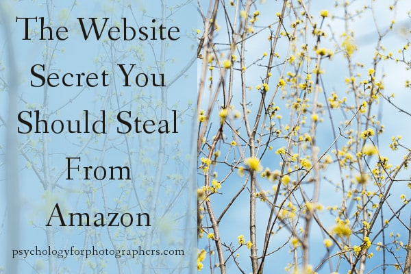 The Website Secret You Should Steal From Amazon
